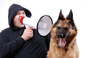 man-yelling-at-dog-small